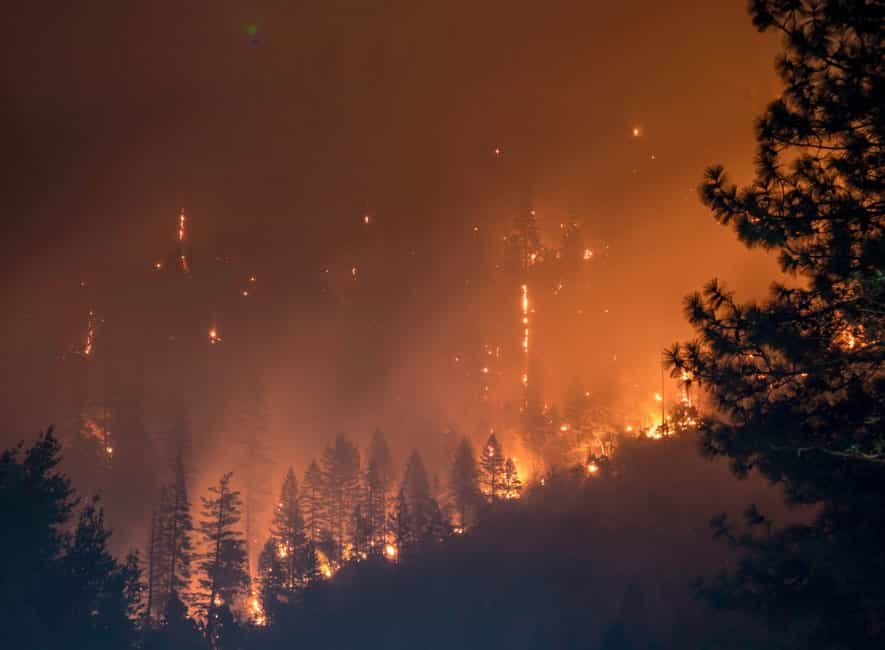 Photo of a huge forest fire, USA