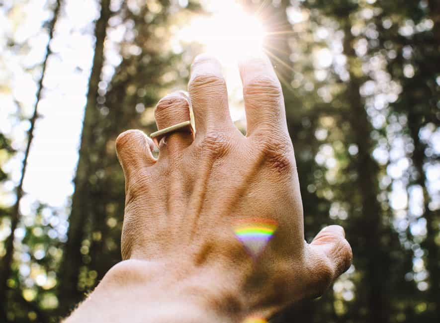 A person's hand reaching out to sunlight through forest trees
