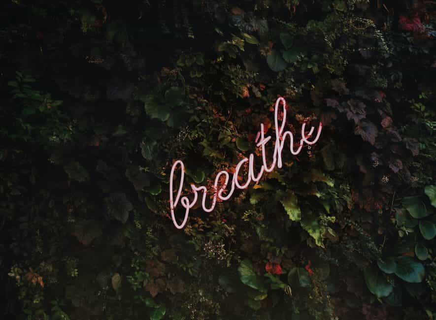 Illuminated neon sign with the word breathe in hedgerow