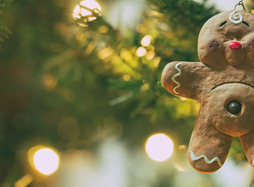 Photograph of gingerbread hanging on festive tree