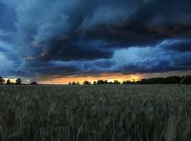 Angry storm clouds over field at sunset