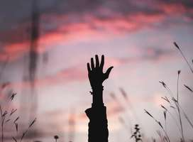 Silhouette photo of single raised mail hand in field with sunrise background